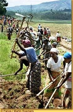 Rwanda_femmes_2.jpg