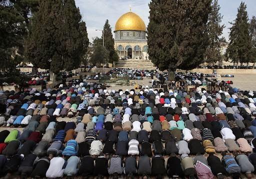 palestine1126.jpg